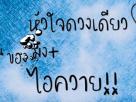 [คอร์ดเพลง | เนื้อเพลง] iควาย – ปราง ปรางทิพย์